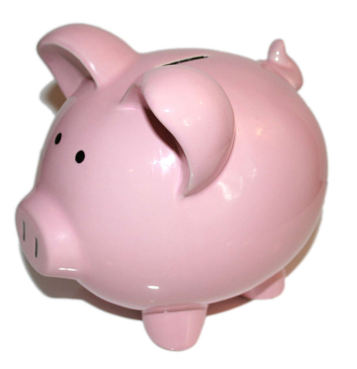 """QDRO in Florida - image shows a pink """"piggy bank"""""""